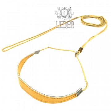 Ринговка для собак Onega Круглая с Расширителем нейлон 3мм Золотая